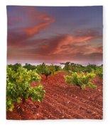 Vineyards At Sunset Fleece Blanket