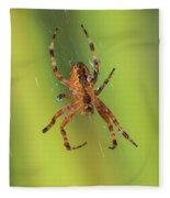 Web Walker Fleece Blanket