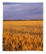 Wheat Crop In A Field, North Dakota, Usa Fleece Blanket