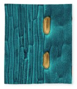 Wheat Leaf Stomata, Sem Fleece Blanket