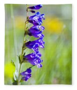 Wildflowers And Pikes Peak In The Pike National Forest Fleece Blanket