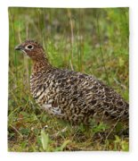 Willow Ptarmigan Fleece Blanket