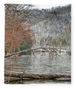 Winter Landscape At Hungry Mother State Park Fleece Blanket