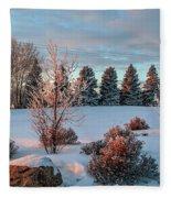 Winter Sunset In Weyburn Fleece Blanket