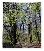 Woodland Walk England Fleece Blanket