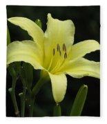 Yellow Bloom Fleece Blanket