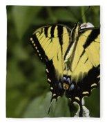 Yellow Butterfly Fleece Blanket