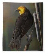Yellow Headed Blackbird On Cattails Fleece Blanket