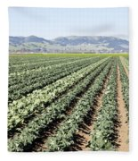 Young Broccoli Field For Seed Production Fleece Blanket