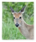 Young White-tailed Buck In Velvet Fleece Blanket