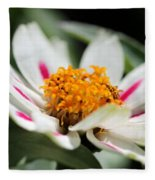 Zinnia Named Zahara Starlight Rose Fleece Blanket