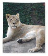 Zoo Lion Fleece Blanket