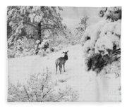 Elk In Deep Snow In The Pike National Forest Fleece Blanket