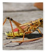 10- Lubber Grasshopper Fleece Blanket