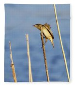 Sedge Warbler Fleece Blanket