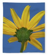 Wild Sunflower Stony Brook New York  Fleece Blanket