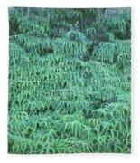 100134 Uluhe Ferns Hawaii Fleece Blanket