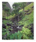 100181 Awaawapuhi Creek Na Pali Coast Fleece Blanket