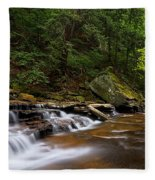 Brandywine Creek Falls Fleece Blanket
