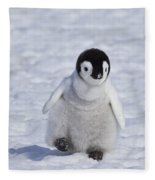 Emperor Penguin Chick Fleece Blanket