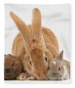 Rabbits Fleece Blanket
