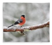 Eurasian Bullfinch In Winter Fleece Blanket