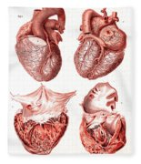 Heart, Anatomical Illustration, 1814 Fleece Blanket