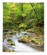 1266 Great Smoky Mountain National Park Fleece Blanket