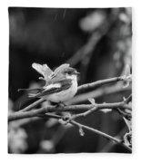 European Pied Flycatcher Fleece Blanket