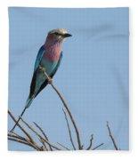 Lilac Breasted Roller On Alert Fleece Blanket