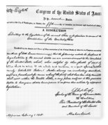 13th Amendment, 1865 Fleece Blanket
