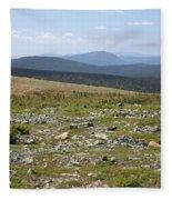 Alpine Tundra Fleece Blanket
