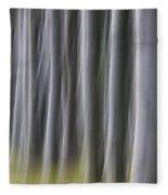 150403p263 Fleece Blanket