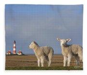 150709p308 Fleece Blanket