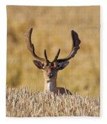 151105p145 Fleece Blanket