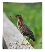 81- Green Heron Fleece Blanket