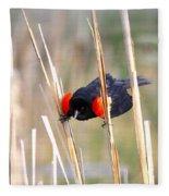 1911 - Red-winged Blackbird Fleece Blanket