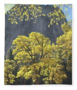 1m6610 Middle Cathedral Rock In Autumn Fleece Blanket