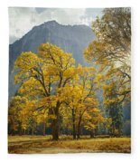 1m6611-oak Trees And Middle Cathedral Rock In Autumn Fleece Blanket