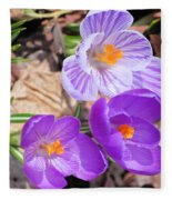 1st Flower In Garden 2010 Photo Fleece Blanket