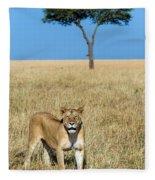 African Lioness Panthera Leo, Serengeti Fleece Blanket