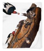 Audubon: Woodpecker Fleece Blanket