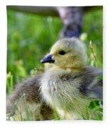 Baby Goose Chick Fleece Blanket