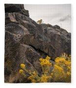 Belfast Petroglyphs Fleece Blanket
