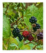 Berries In Vicente Perez Rosales National Park Near Puerto Montt-chile  Fleece Blanket