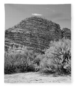 Big Bend National Park Fleece Blanket