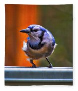 Bluejay Fleece Blanket