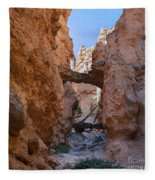 Navajo Trail Natural Bridge Fleece Blanket