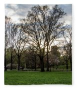 Central Park Views  Fleece Blanket