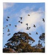 Cockatoos - Canberra - Australia Fleece Blanket